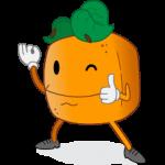 Webdesign & Werbeagentur Hannover Dirim Media Orange Daumen