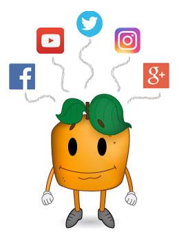 Dirimmedia Socialmedia Kontakt